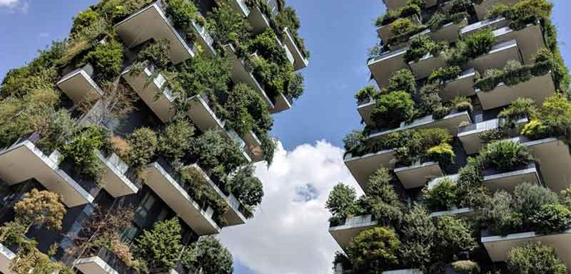 Vertical garden in Bangkok