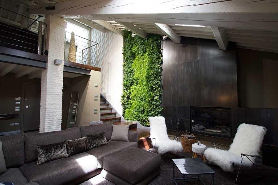 Vertical garden, green wall