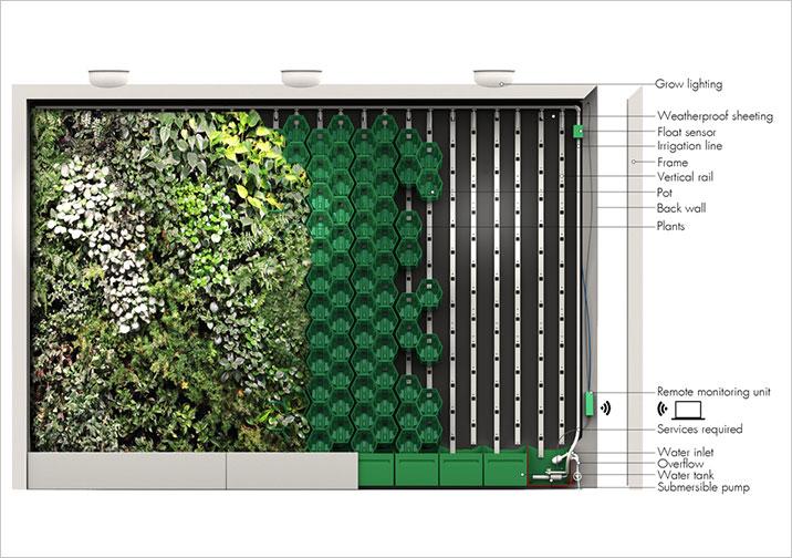Install a vertical garden